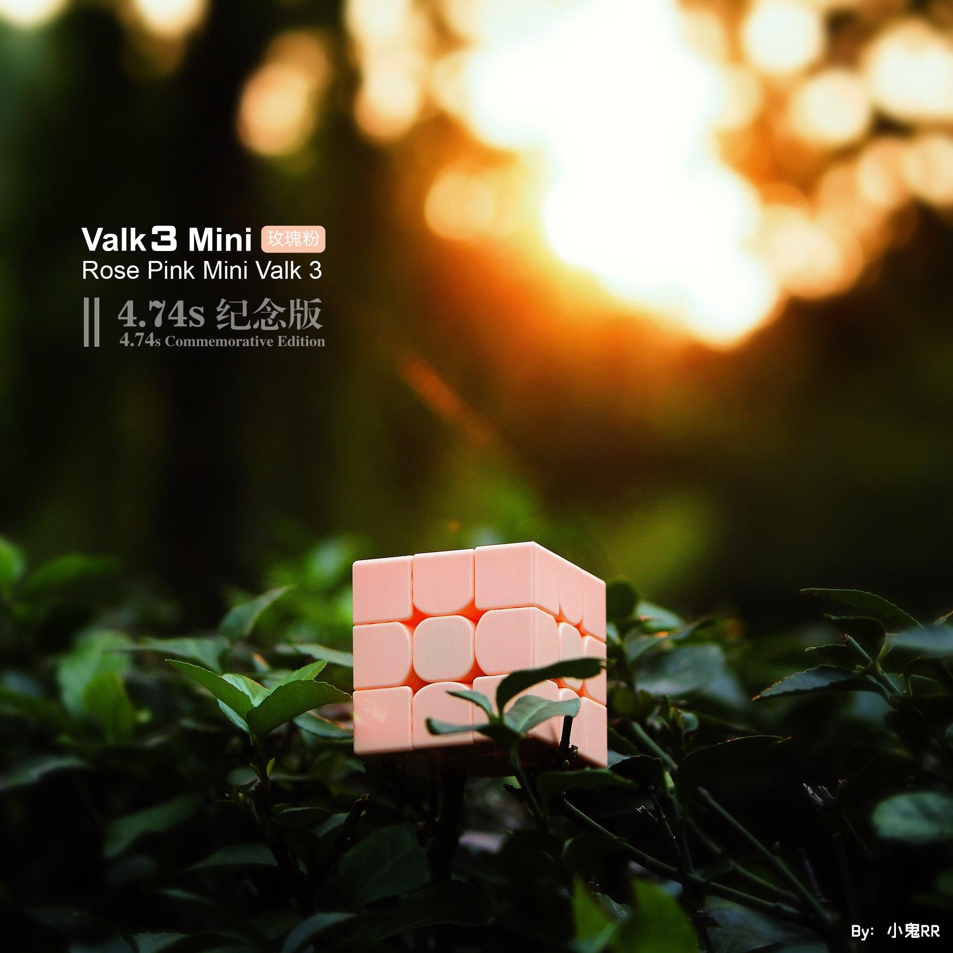 valk3_mini_rose_(6)